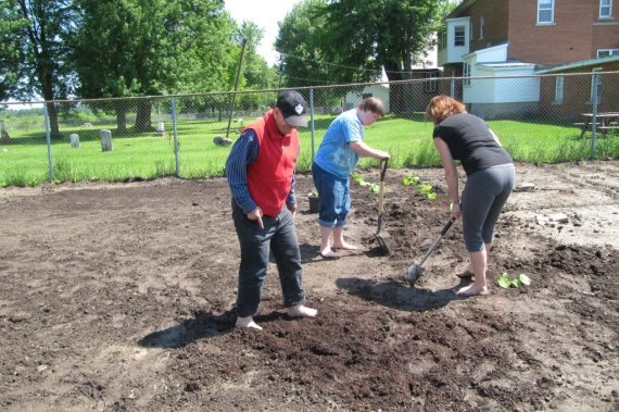 From Seed to Staff and Students at HAECC