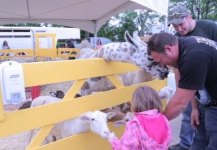 Video: Ormstown Fair – Our House (Episode 10)