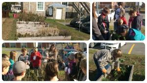 4.Community Garden